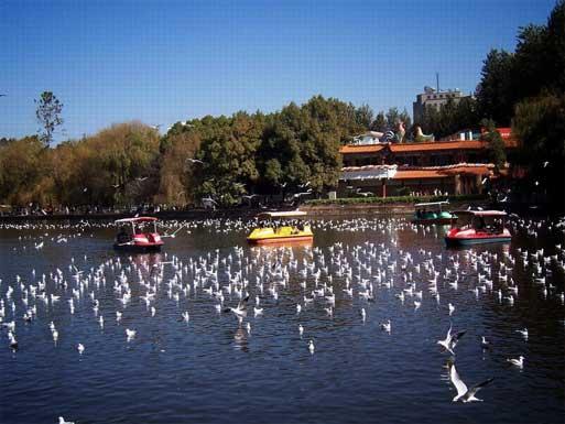 Green Lake Kunming