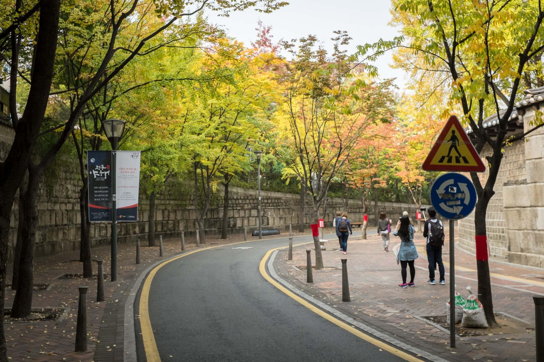 Seoul Fall 2015 (14 of 32)