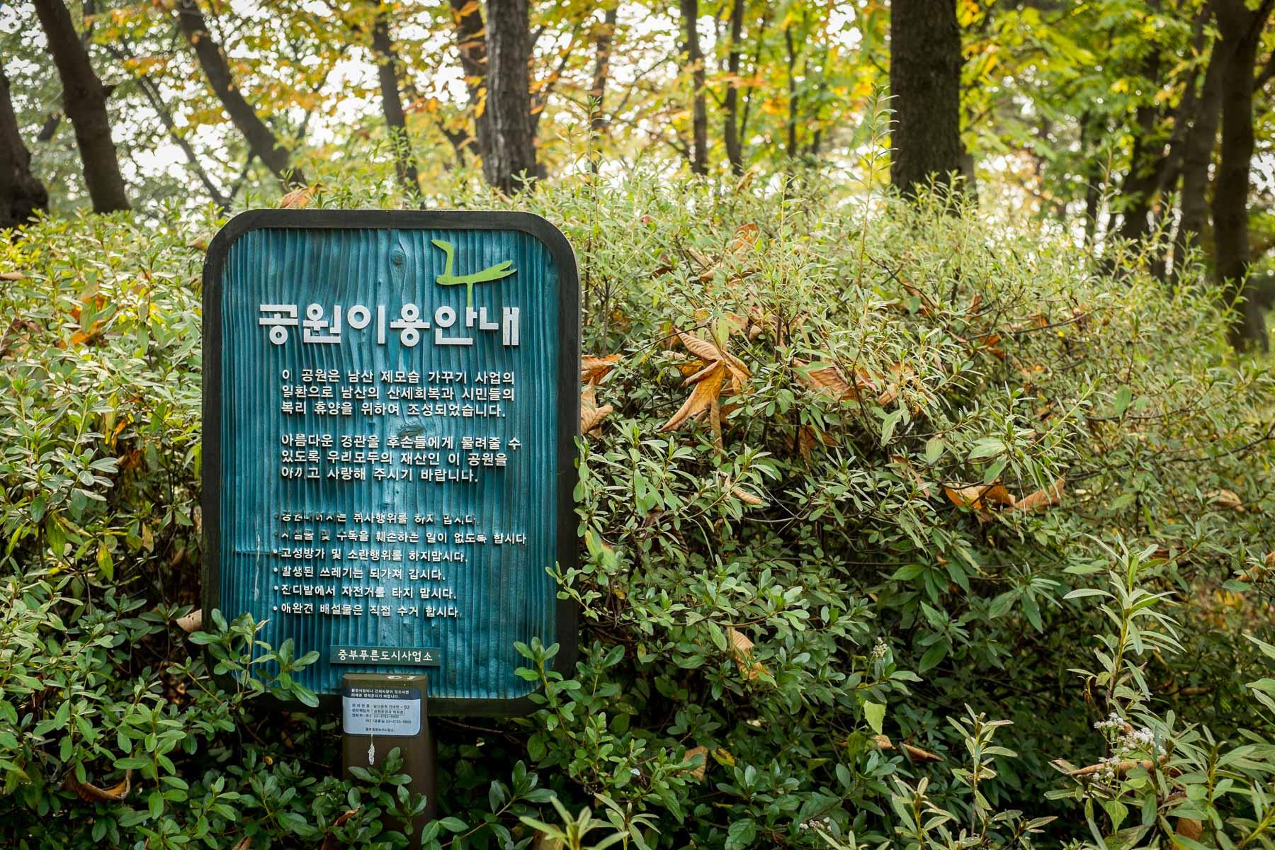 Seoul Fall 2015 (21 of 32)
