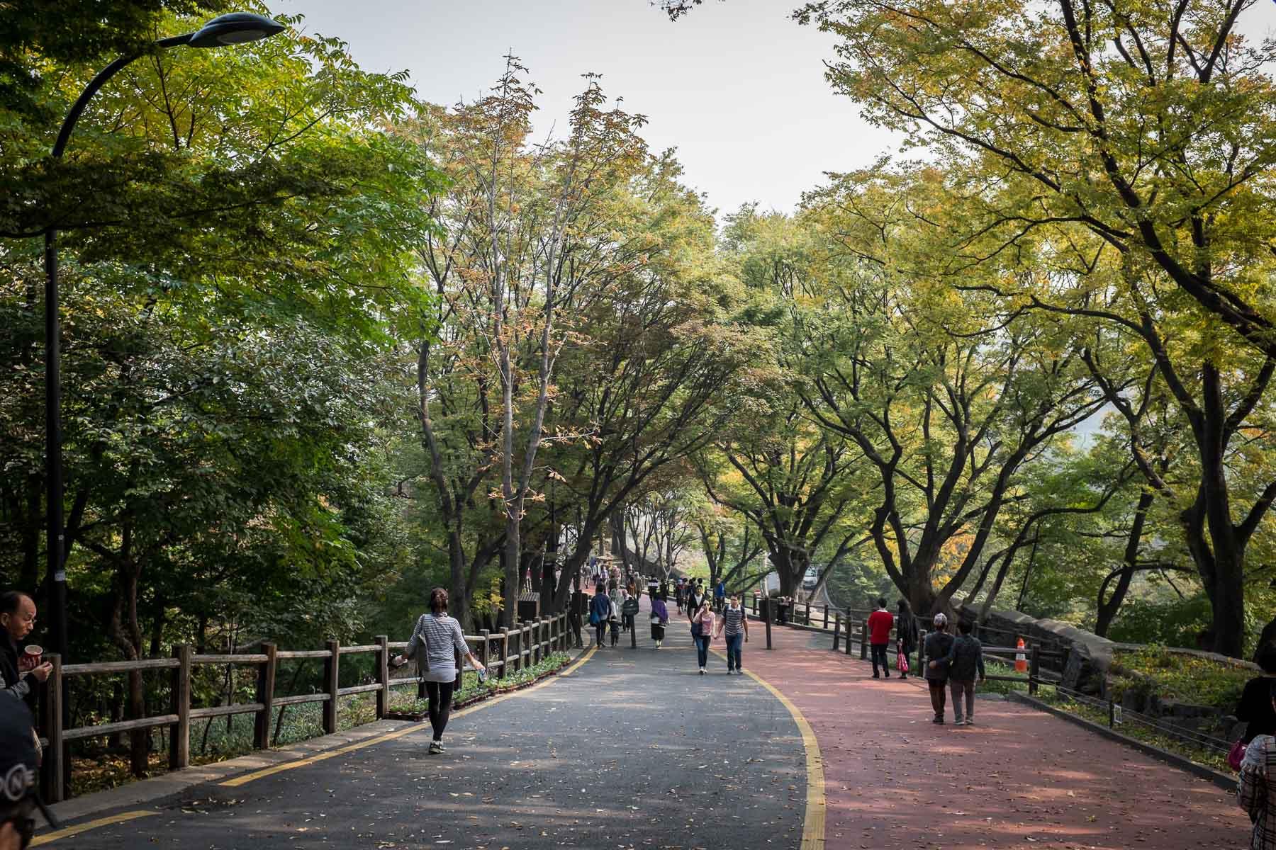 Seoul Fall 2015 (25 of 32)